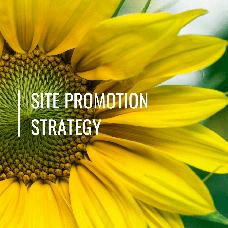 Разработка стратегии сайта